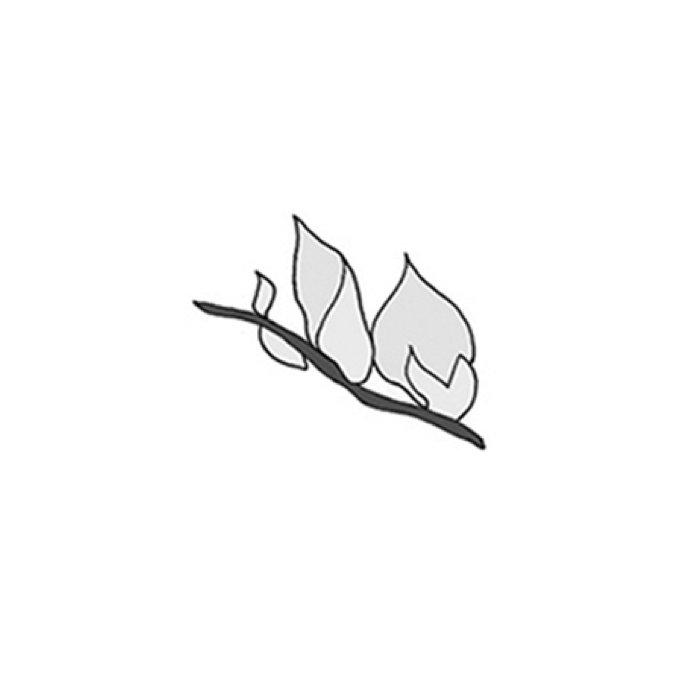 ginestra-dell-etna-logo