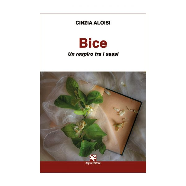 bice-cinzia-aloisi